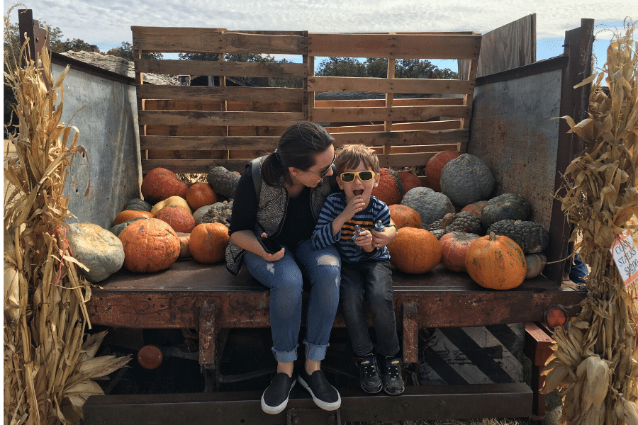 Sweet Berry Farm Review: A Perfect Family Day