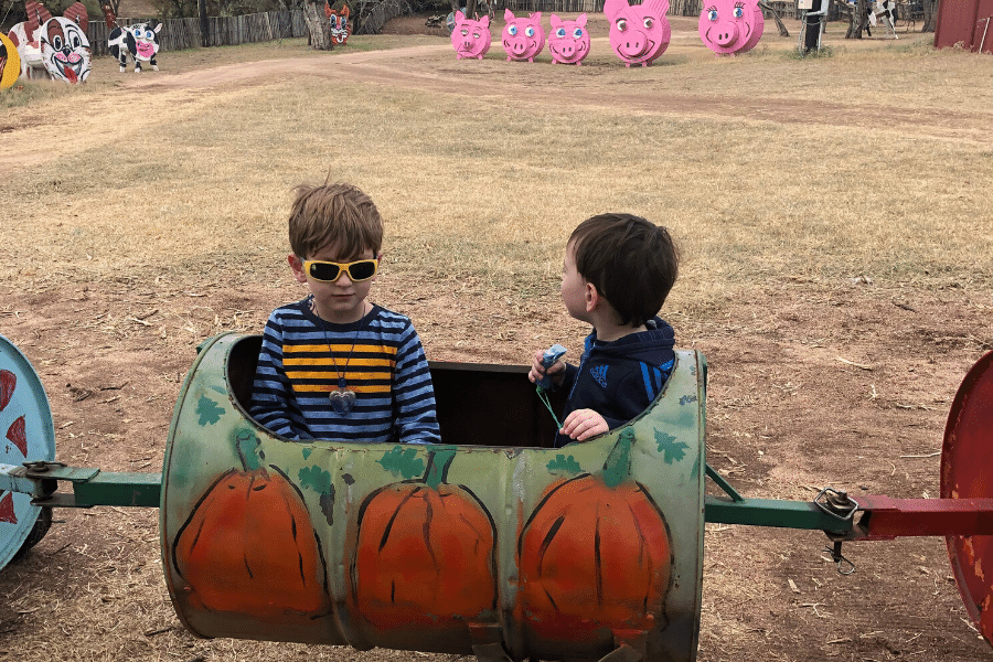Barrel train ride pumpkin patch